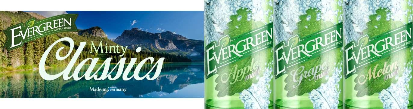 B4-Evergreen